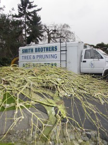 Truck on pruning site 1